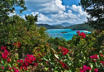 From Peter Bay, St John USVI
