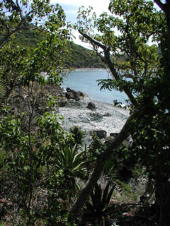 View from Ram Head hiking trail, St John USVI