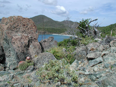 View atop Ram Head hiking trail, St John USVI